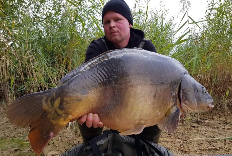 twelvefeetmag bait perfection big fish karpfenangeln 1 980x660 - Fette Fänge im Oktober und November