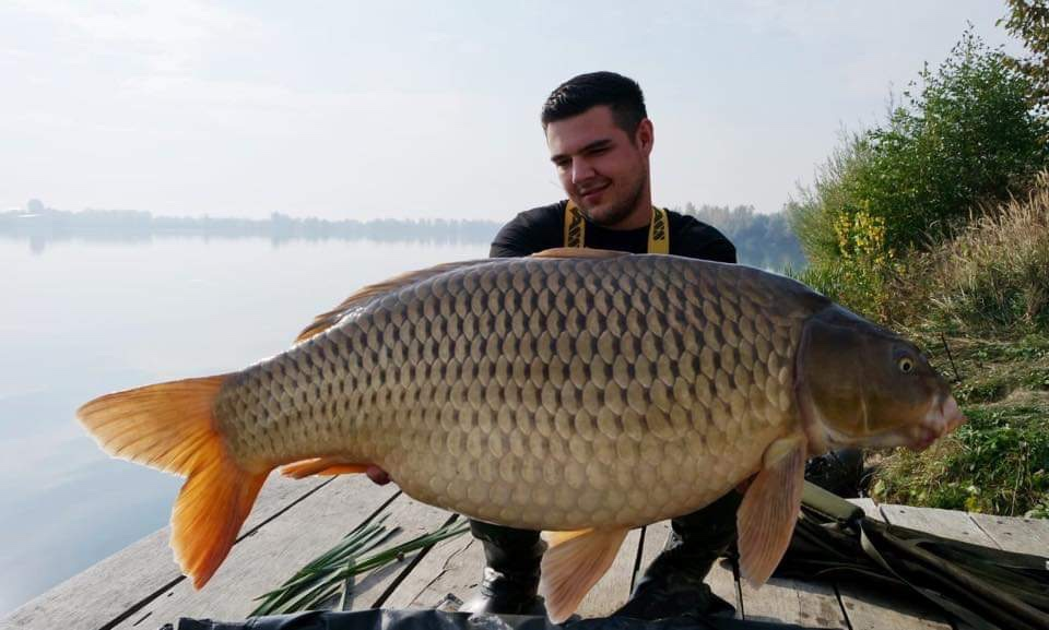 twelvefeetmag bait perfection big fish karpfenangeln 15 -  - Bait Perfection