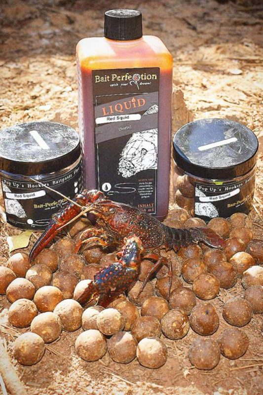 twelvefeetmag bait perfection big fish karpfenangeln 18 533x800 -  - Bait Perfection
