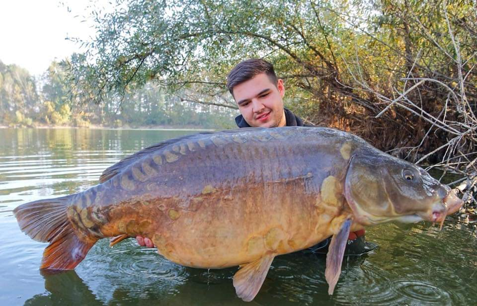 twelvefeetmag bait perfection big fish karpfenangeln 7 -  - Bait Perfection