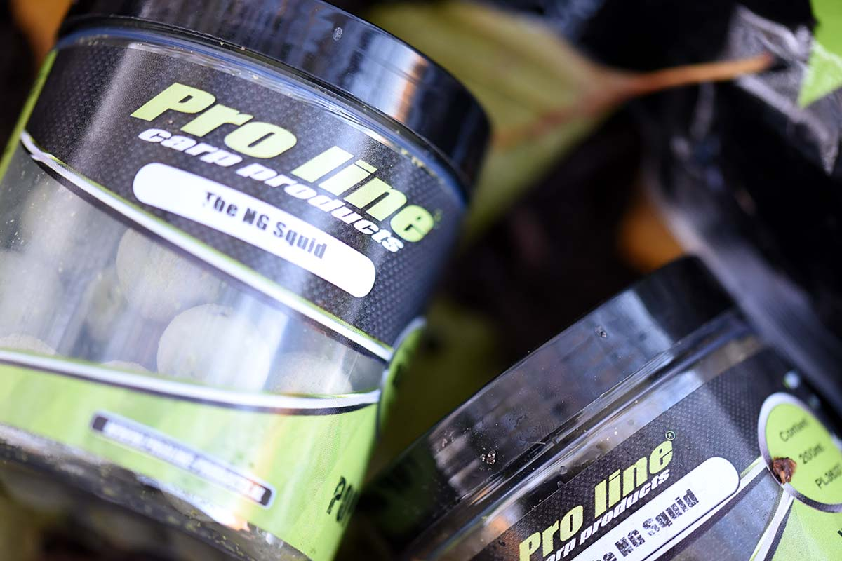 twelvefeetmag proline NG Squid Boilies 10 -  - Proline