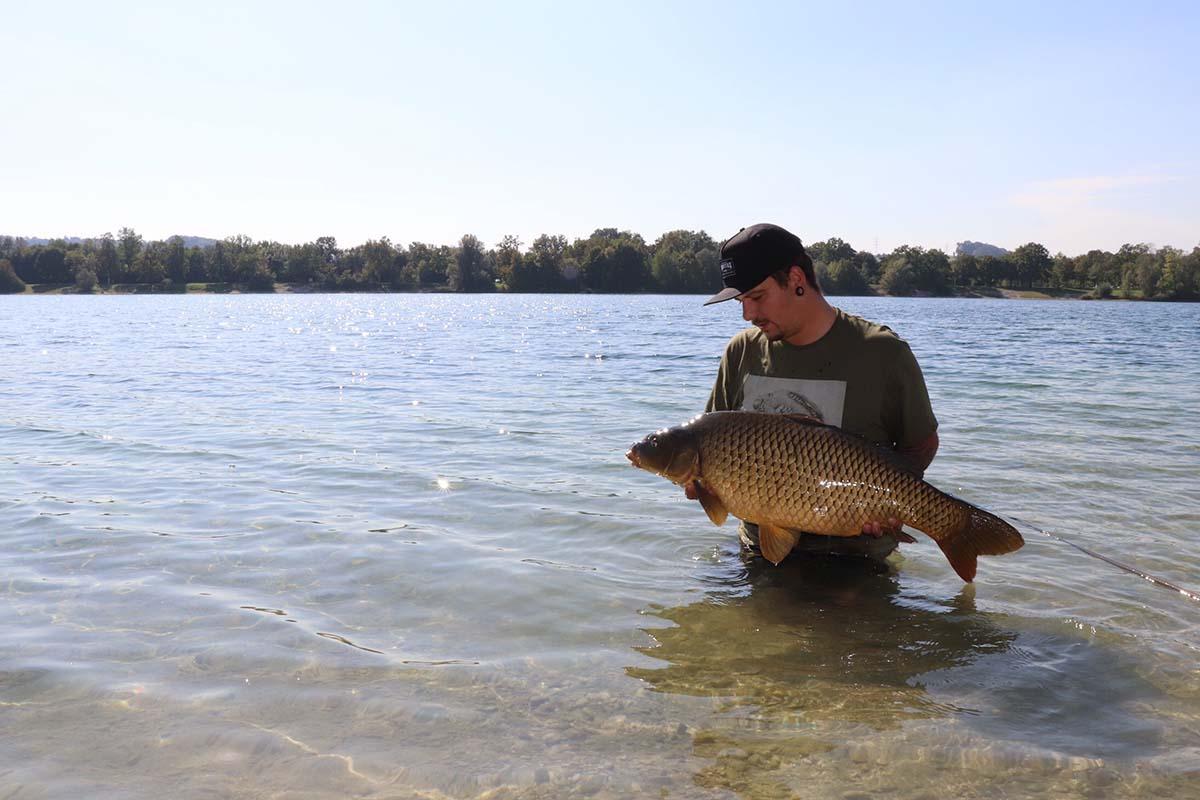 twelve ft 5A5M Uwe Roithner 2 -  - karpfenangeln, 5 Angler - 5 Meinungen