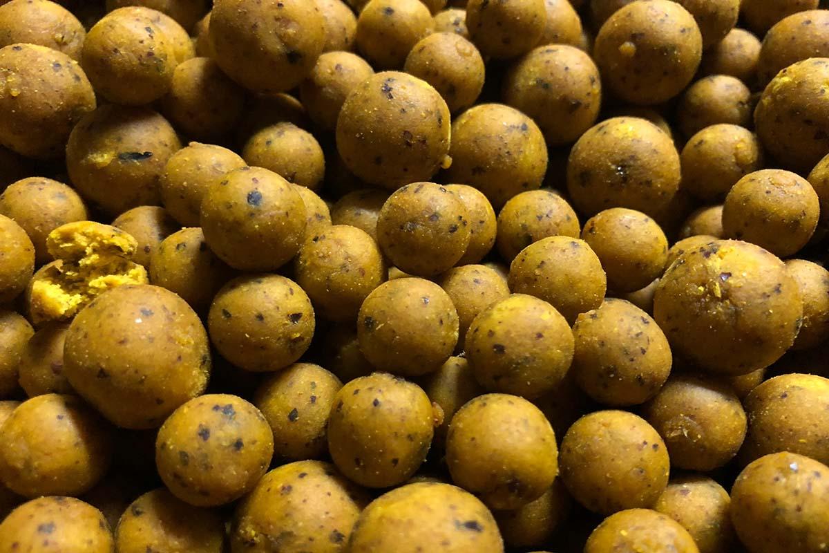 twelvefeetmag solid citrus boilies hz baits 2 -  - Solid Citrus, HZ-Baits, boilies