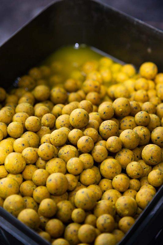 twelvefeetmag solid citrus boilies hz baits 5 533x800 -  - Solid Citrus, HZ-Baits, boilies