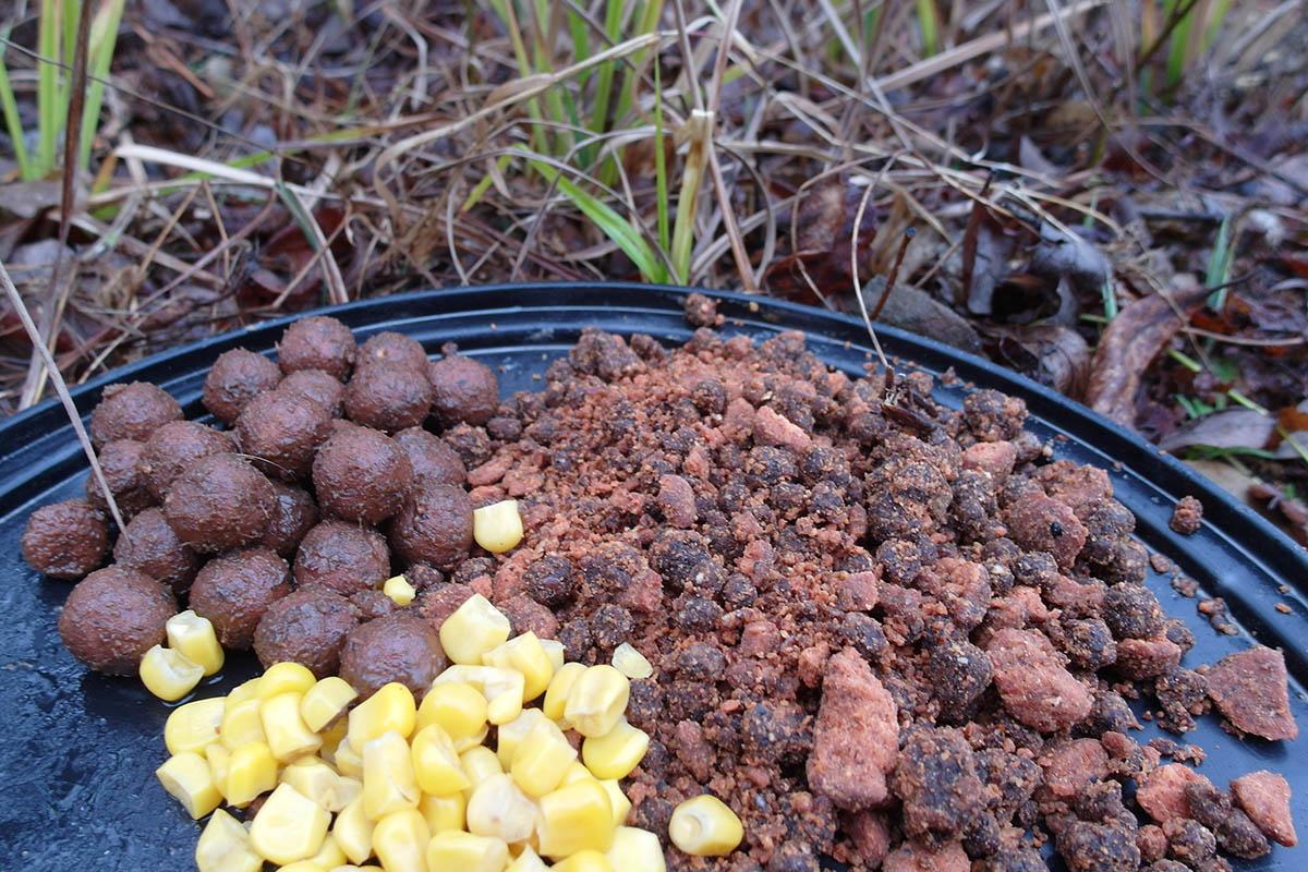 twelvefeetmag Karpfenangeln im Frühling 5 -  - R&L Baits, karpfenangeln, frühling, Frühjahr