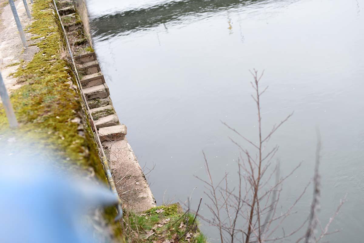 twelvefeetmag karpfenangeln am fluss 10 -  - Karpfenangeln am Fluss, Flusskarpfen
