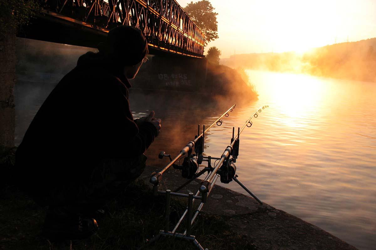 twelvefeetmag karpfenangeln am fluss 11 -  - Karpfenangeln am Fluss, Flusskarpfen