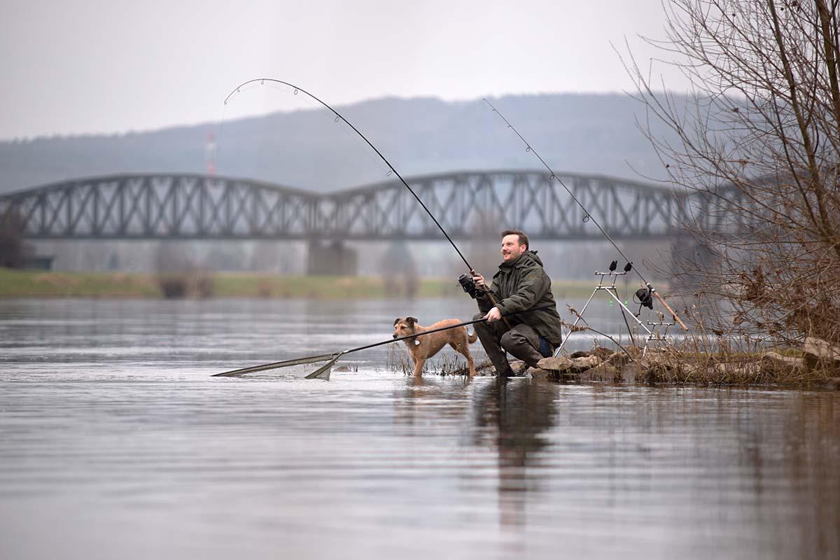 twelvefeetmag karpfenangeln am fluss 4 -  - Karpfenangeln am Fluss, Flusskarpfen
