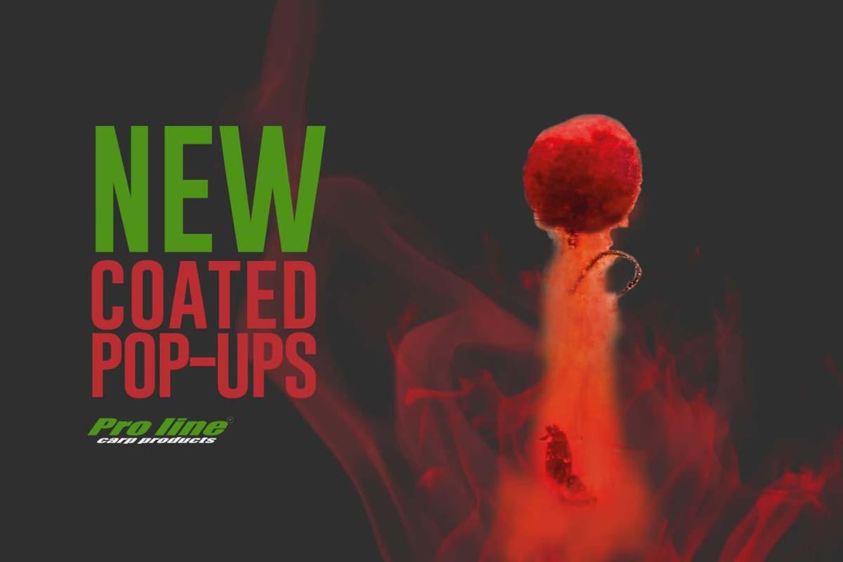 twelvefeetmag proline wafter popups 2019 2 -  - Wafter, Proline, Pop-ups, Hookbaits