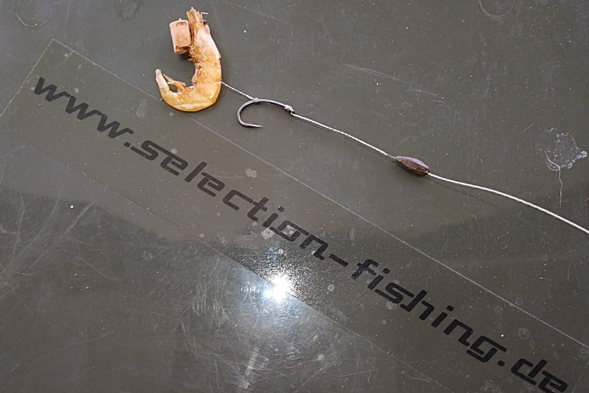 twelvefeetmag selection fishing fruehjahr 4 -  - Selection Fishing, Natural food, Natural Carpfood, Hakenköder