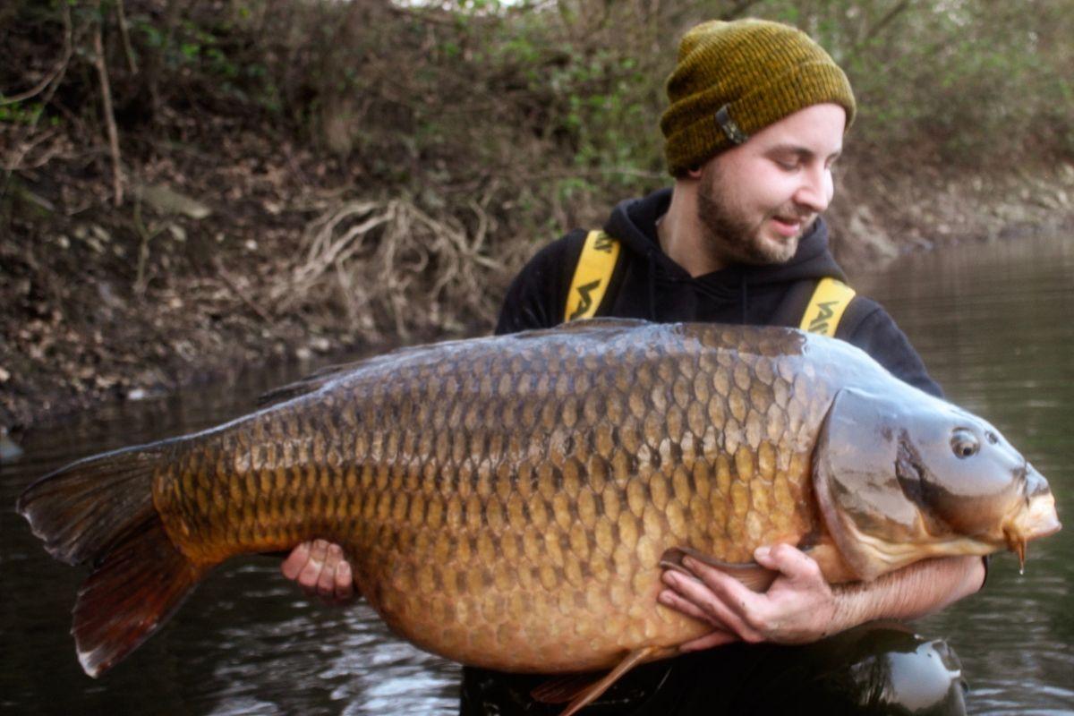 twelvefeetmag mehr als 30 kilo 11 -  - 30 Kilo Karpfen, 30 Kilo, 30 Kg