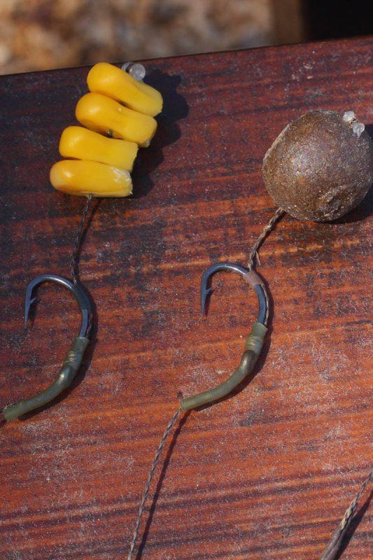 twelvefeetmag Dosenmais Karpfenangeln 5 533x800 -  - Karpfenangeln mit Dosenmais, Karpfen mit Dosenmais, Dosenmais Karpfenangeln, Dosenmais Karpfen fangen