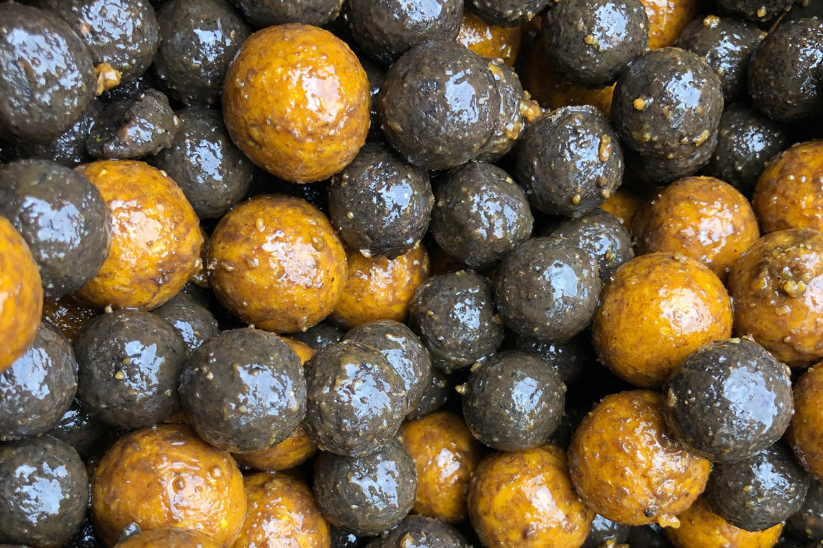 twelvefeetmag carpcracker baits short sessions 4 -  - Shorties, Short Sesisons, karpfenangeln, Carp-Cracker Baits