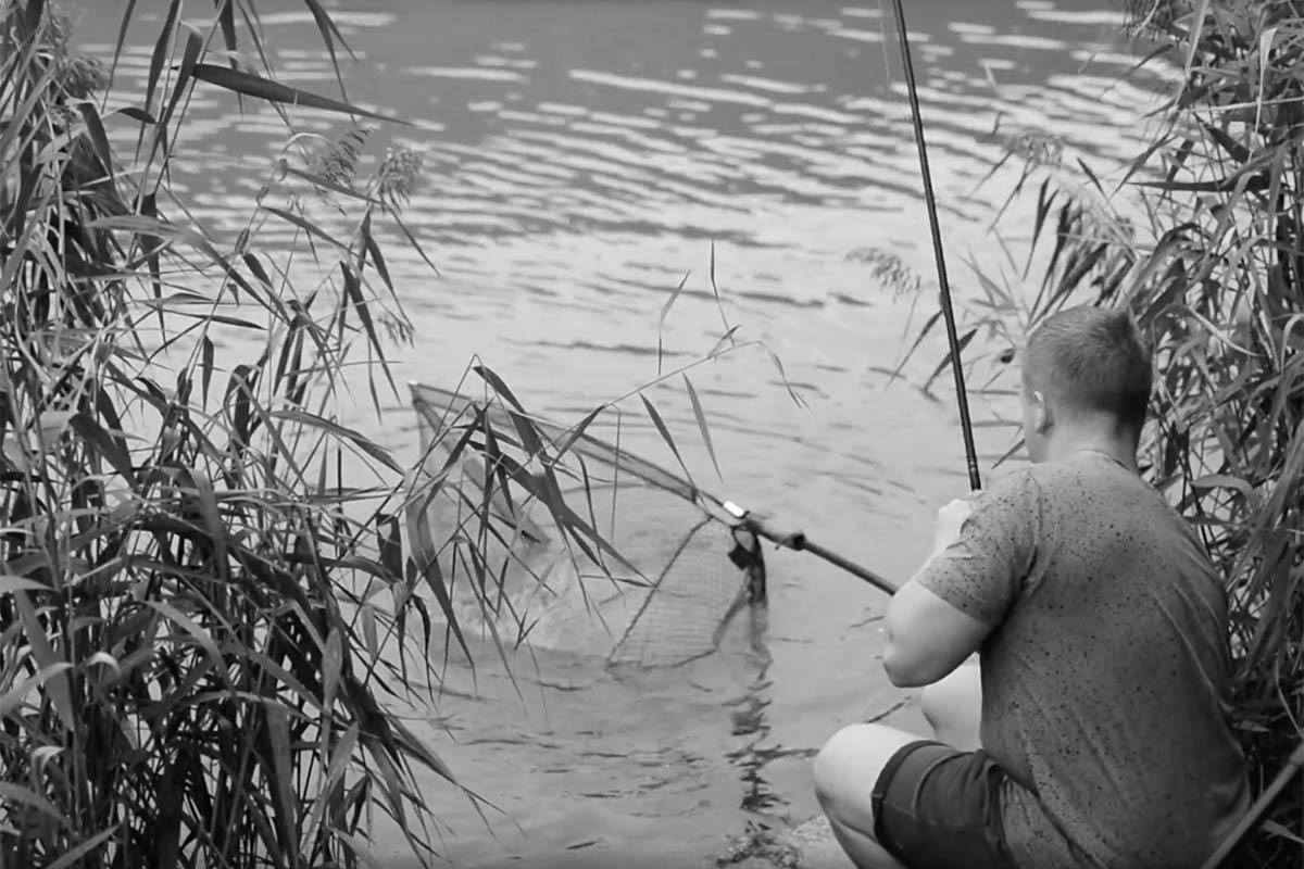 twelvefeetmag proline video 2 -  - Proline, Products, karpfen am fluss, Flusskarpfen, Flussangeln, carp
