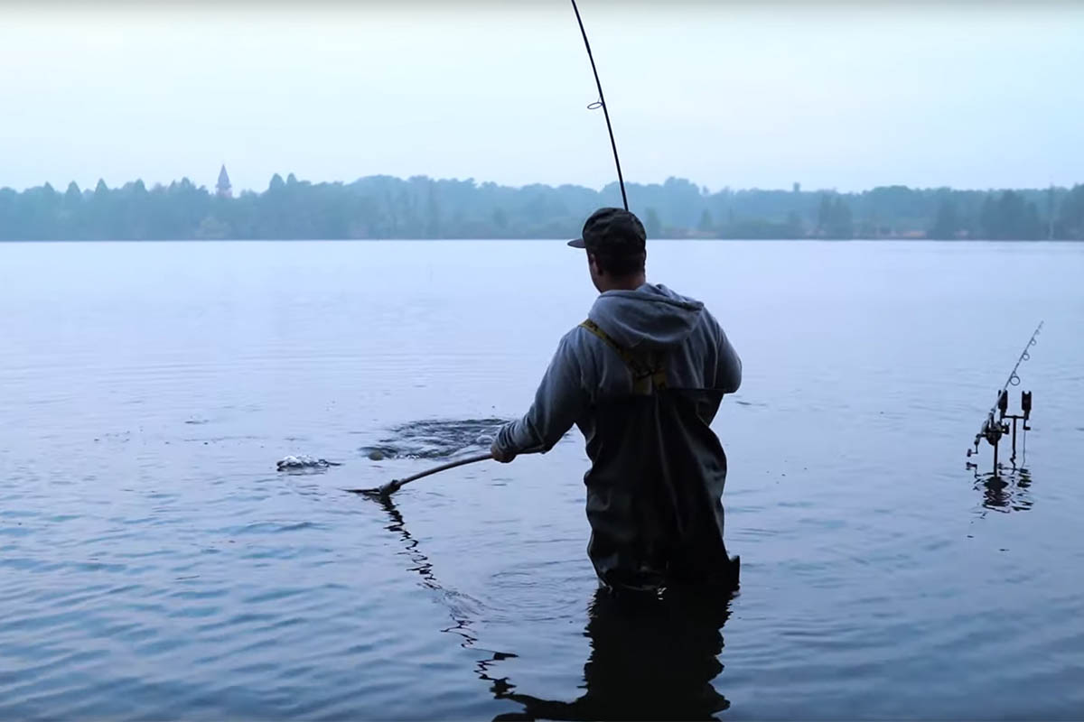 twelvefeetmag vlog successful baits 5 -  - Vlog, Video-Logbuch, successful-baits, Spiegler, Kai Köttelwesch