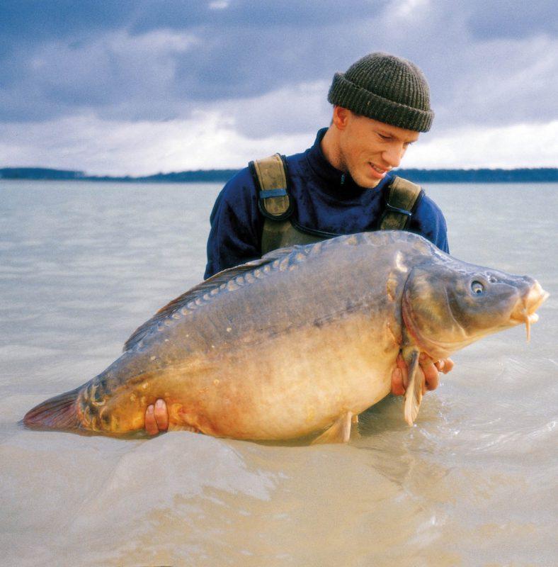 twelvefeetmag Lac Du Der Big Ones 1 788x800 -  - max nollert, lac du der, imperial fishing