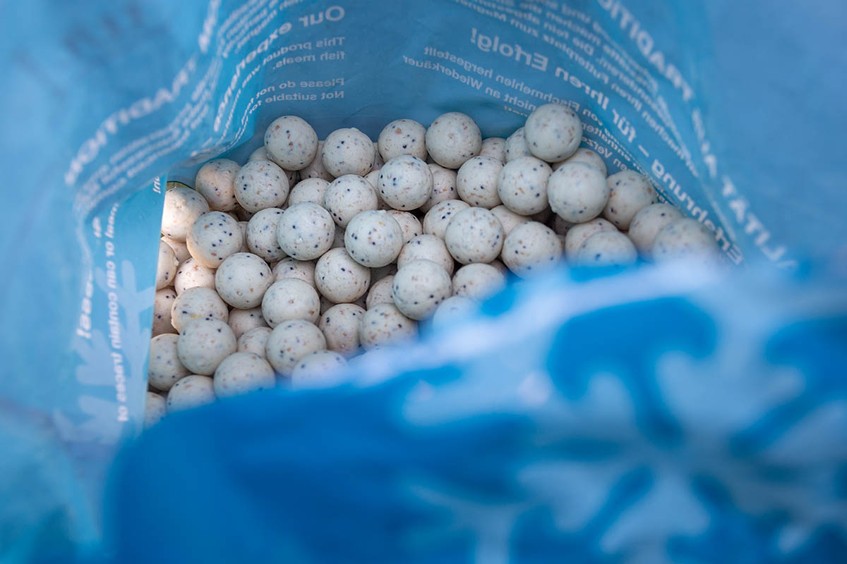twelvefeetmag Successful baits White Thursday 7 -  - white thursday, successful-baits, Carp + Cat Expo, Bundle