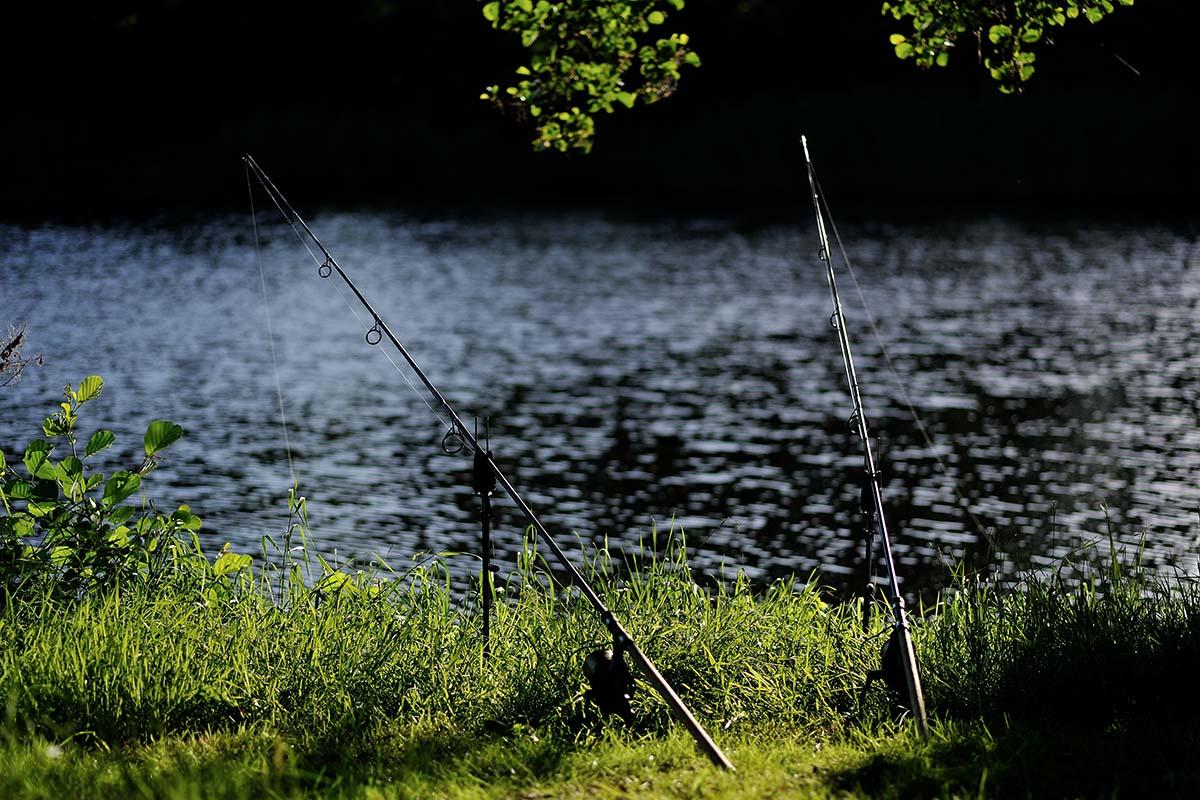 7 -  - Verstehen, twelve ft. Ausgaben, twelve ft., Taktiken zum Karpfenangeln, Ernesto Kamminga, digitales Karpenmagazin, die Natur verstehen, Beobachten