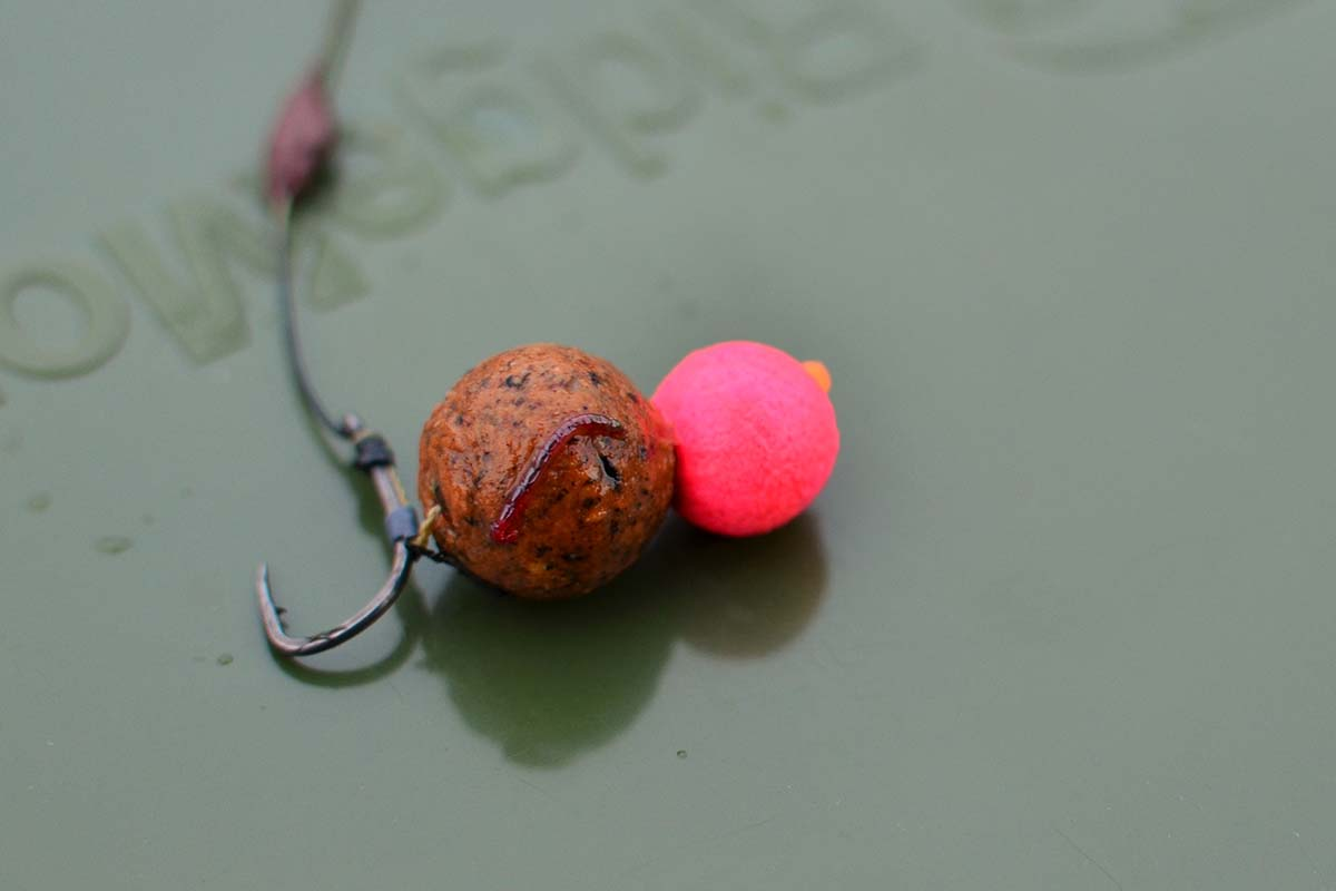 twelvefeetmag carp cracker baits relaunch bait range 2020 6 -  - Carp Cracker