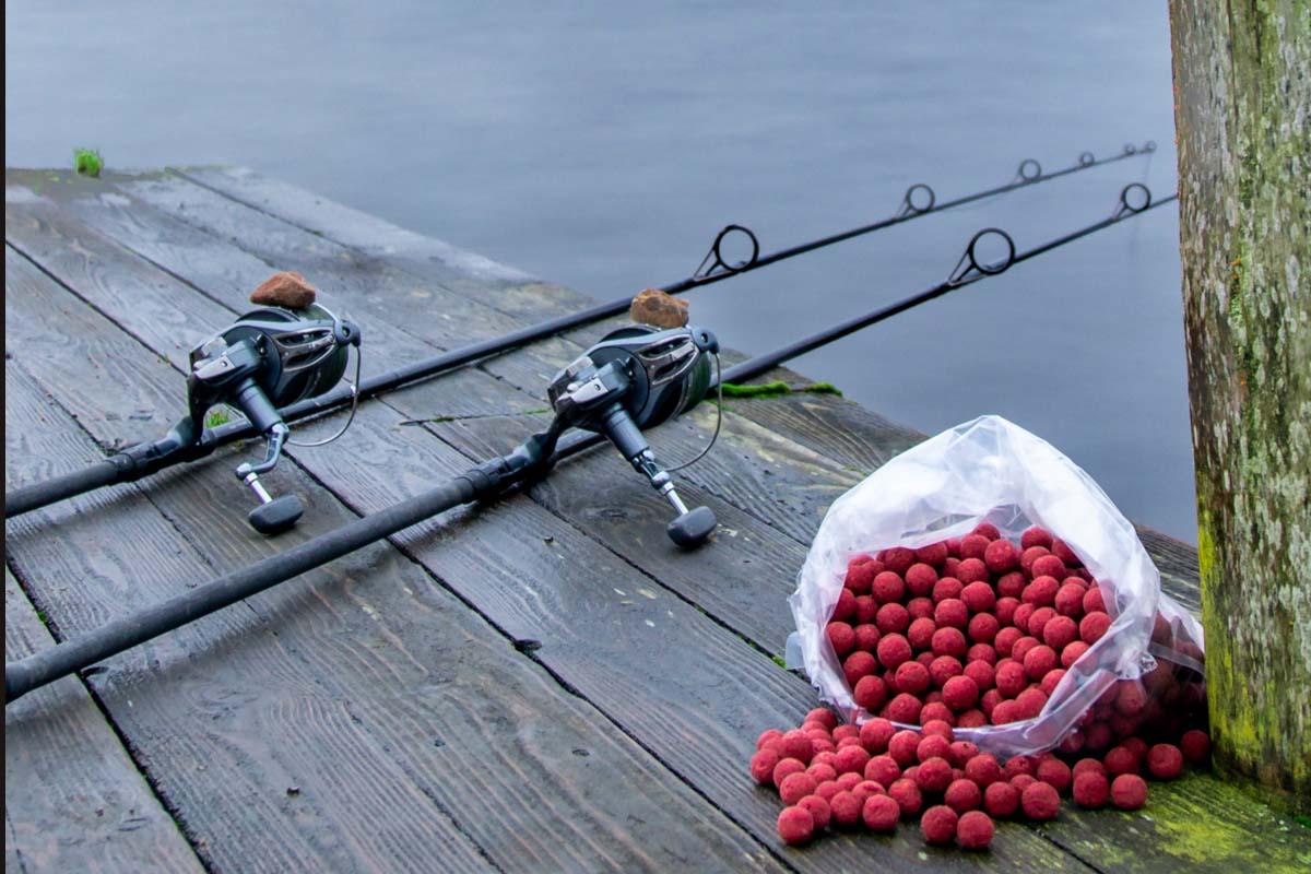 twelvefeetmag cfc bait karpfenangeln im winter in dänemark 2 -  - Karpfenangeln in Dänemark, KArpfenangeln im Winter, CFC Bait