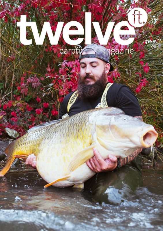 twelve ft. Cover Ausgabe 20