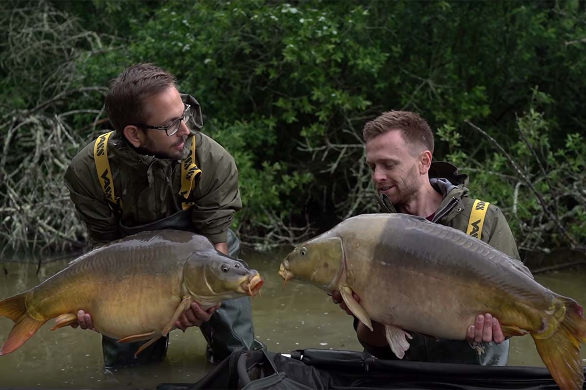 twelvefeetmag successful baits bayern in frankreich 1 -  - successful-baits