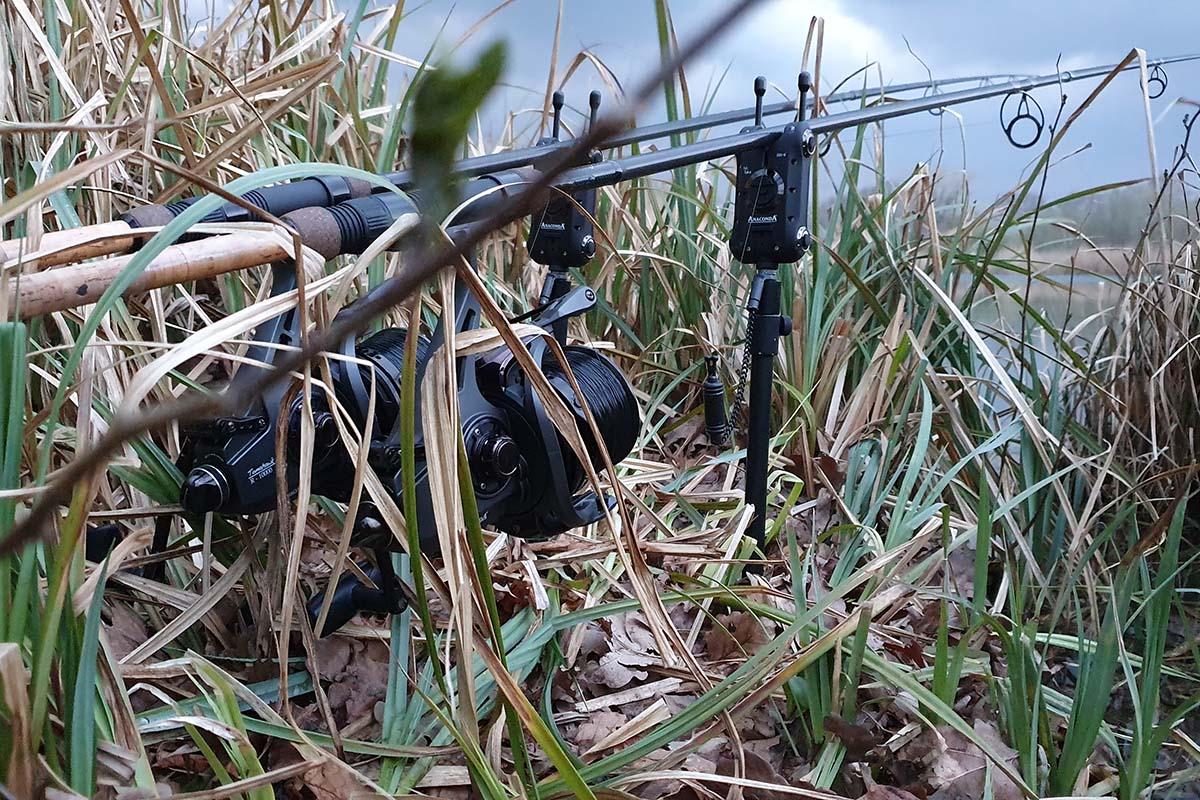 twelvefeetmag fehler beim karpfenangeln im frühjahr 3 -  - Karpfenangeln im Frühjahr, anaconda, Alex Goroschko