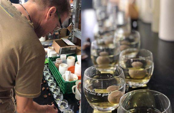 IB Carptrack Liquid-Powder Paste MKII erhältlich – jetzt Tester werden