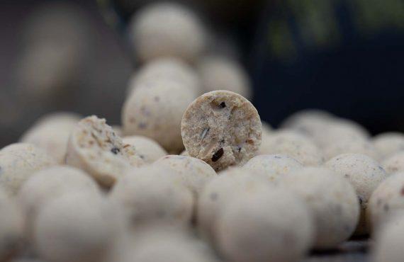Cream Cajouser von Nutrabaits – Ein Köder für die Laichzeit?