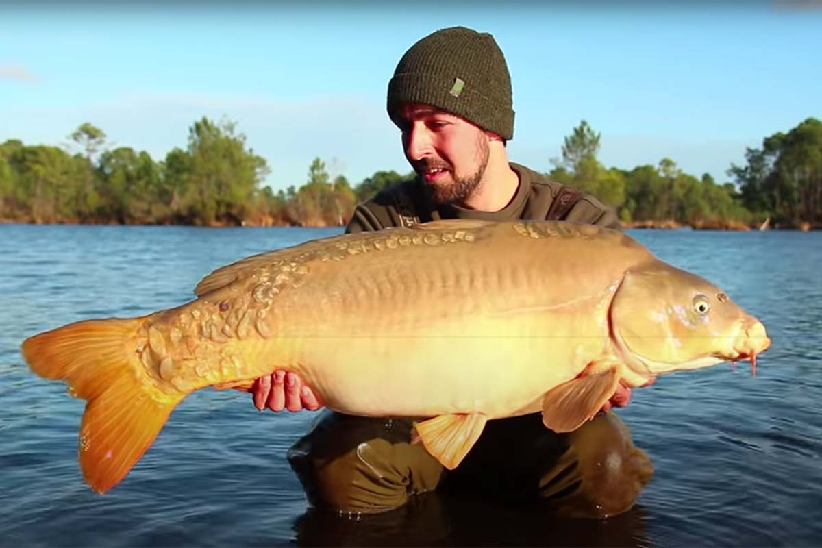 twelvefeetmag philipp gatzsch successful baits karpfenangeln am rainbow lake 1 -  - Rainbow Lake, Philipp Gatzsch