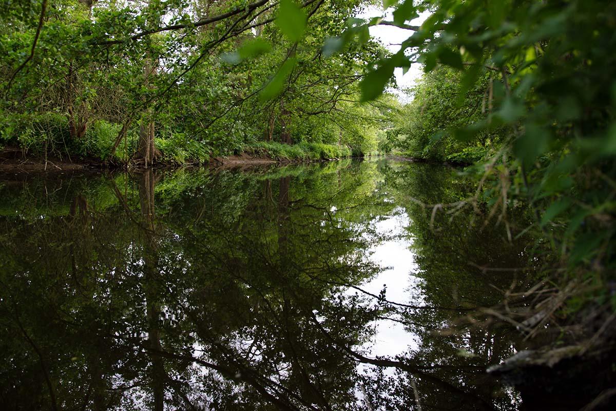 twelvefeetmag karpfenangeln an kleinen flüssen 6 -  - Karpfenangeln an kleinen Flüsse