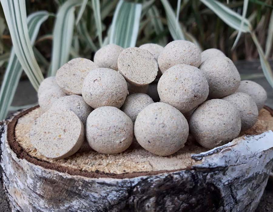 twelvefeetmag black sheep baits garlic 2 fish boilie 2 -  - Weiße Boilies, Garlic 2 Fisch Boilie, Garlic 2 Fisch, Black Sheep Baits