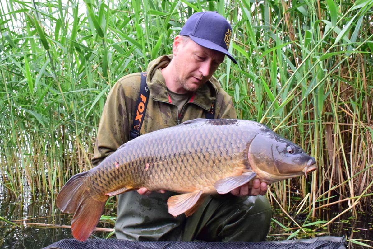 twelvefeetmag fehler beim flussangeln auf karpfen 1 -  - Markus Röhl, Karpfenangeln am Fluss, Flusskarpfen, Flussangeln auf Karpfen