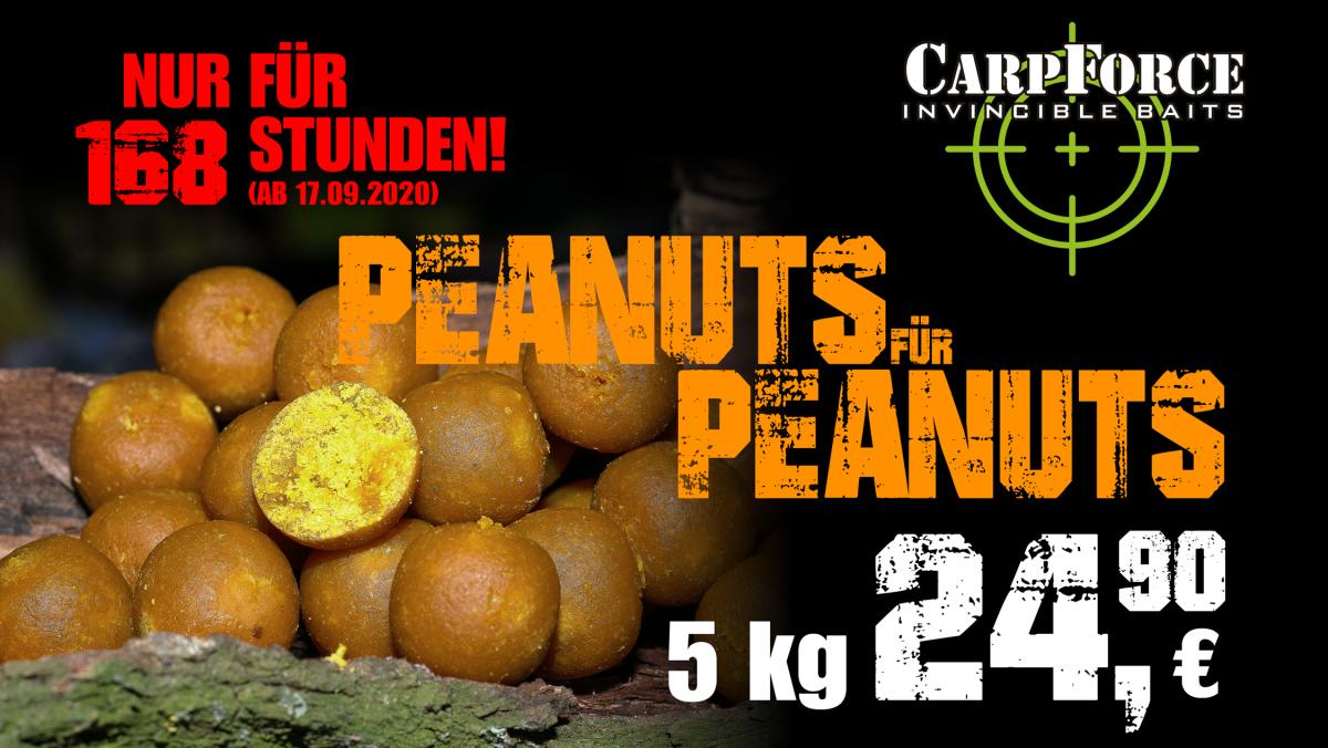 Peanuts168h 1080x608px I 1200x676 -  - Peanuts, Carp Force