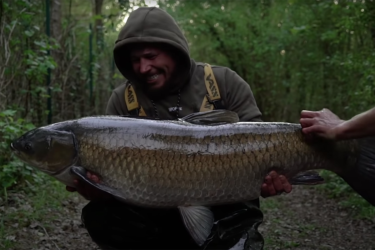 twelvefeetmag Carpliver Vlog1 1 -  - Vlog, Carpliver