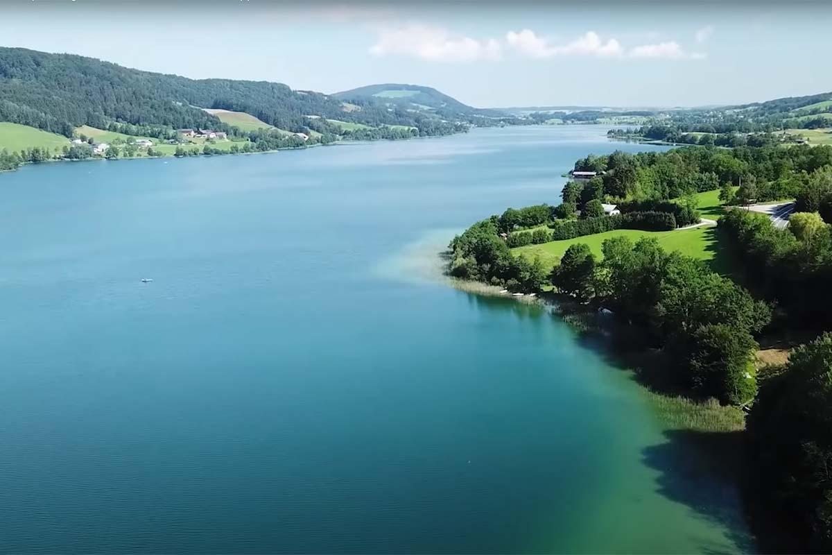 twelvefeetmag karpfenangeln am bodensee 1 -  - Karpfenangeln am Bodensee