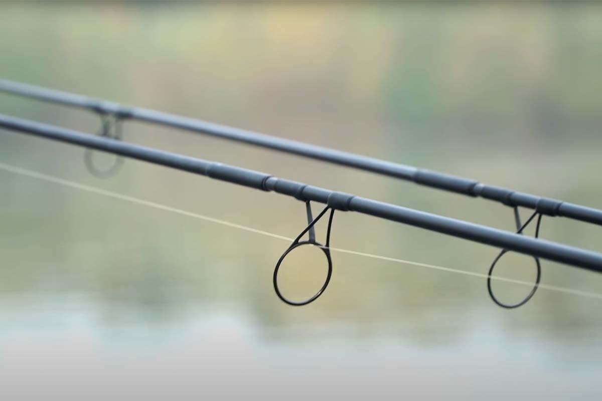 twelvefeetmag marktcheck 12ft. karpfenruten 5 -  - Marktcheck, 12 ft. Karpfenrute