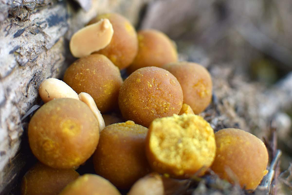 twelvefeetmag peanuts boilie carpforce 1 -  - Peanuts Boilie, Peanuts, CarpForce Peanuts Boilie, CarpForce