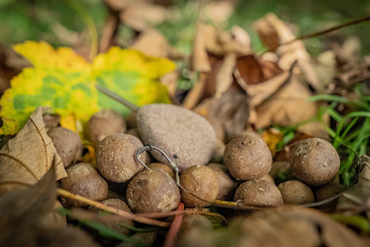 twelvefeetmag carpleads herbstkarpfen 7 -  - Karpfenangeln im Herbst, Herbstangeln, Carpleads