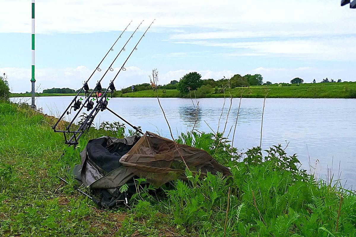 twelvefeetmag karpfenangeln an großen flüssen 6 -  - Karpfenangeln an großen Flüssen, Große Flüsse