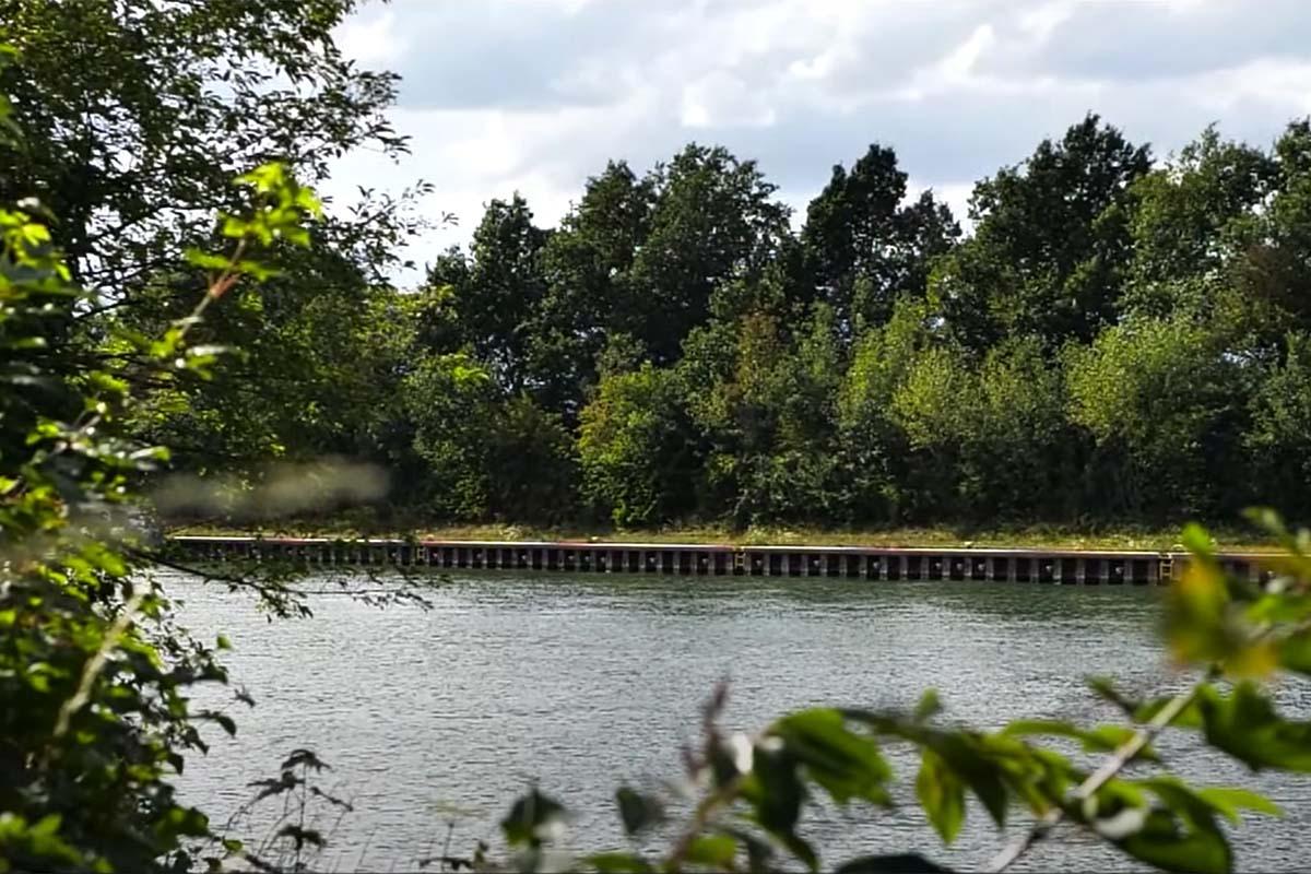 twelvefeetmag karpfenangeln am kanal andre börner 2 -  - Karpfenangeln am Kanal