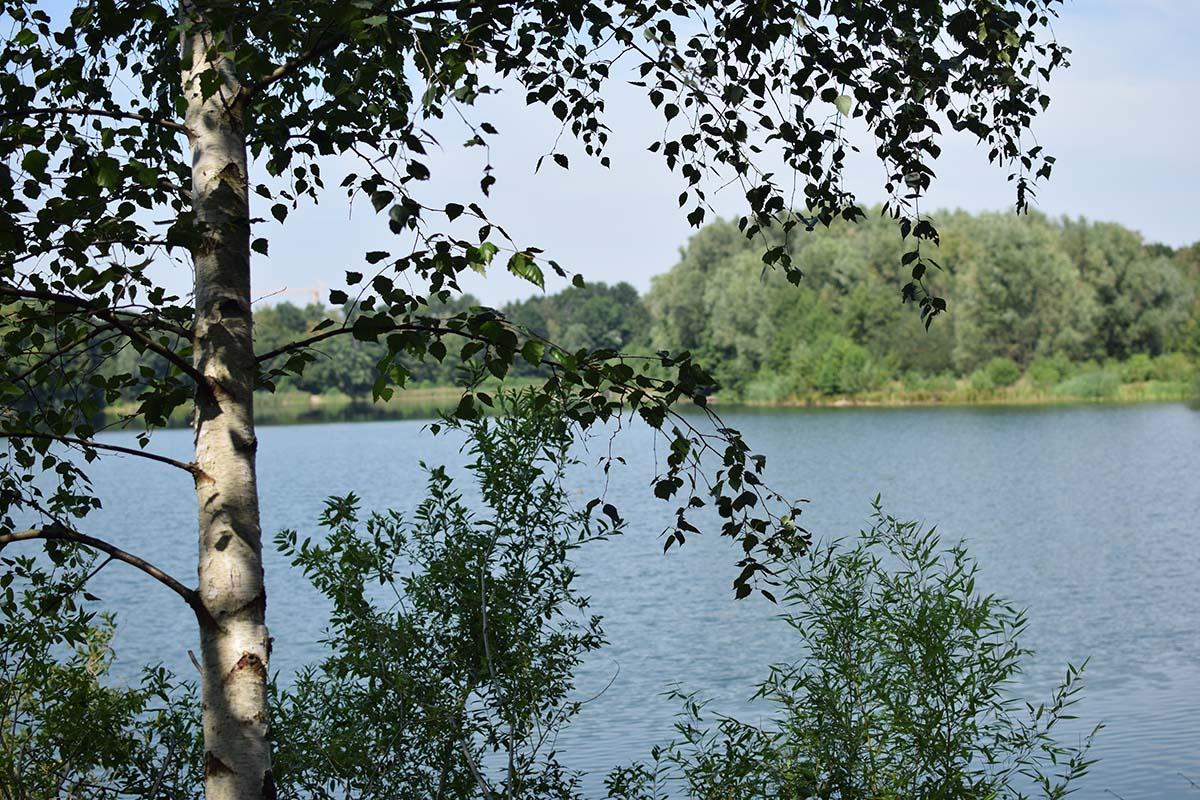 twelvefeetmag karpfenangeln im herbst andi rübsamen 1 -  - Sticky Baits, Futterplatzangeln, Futterplatz im Herbst, Andi Rübsamen