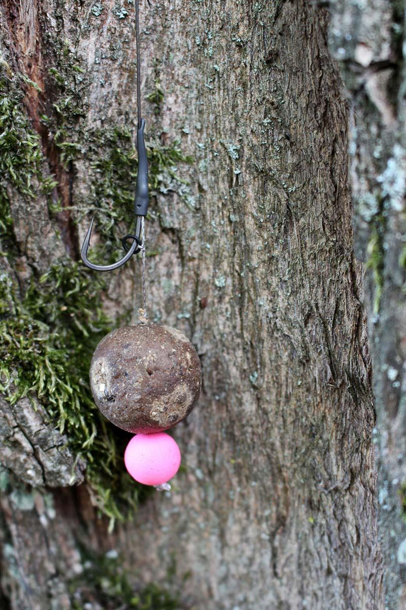 twelvefeetmag karpfenangeln im herbst in frankreich 8 -  - Nordfrankreich, Karpfenangeln in Frankreich, Karpfenangeln im Herbst