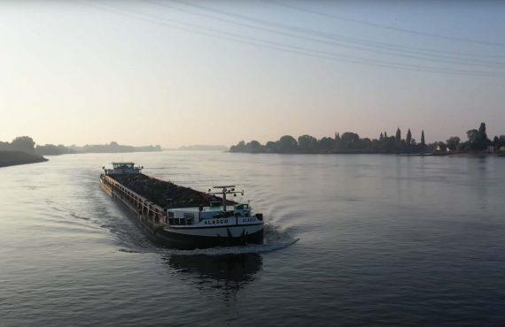 Karpfenangeln in der Elbe – Herausforderung in Hamburg