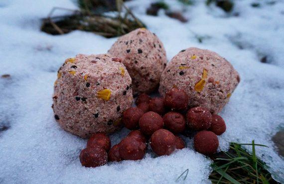 Karpfenangeln im Februar – Taktik und Tipps