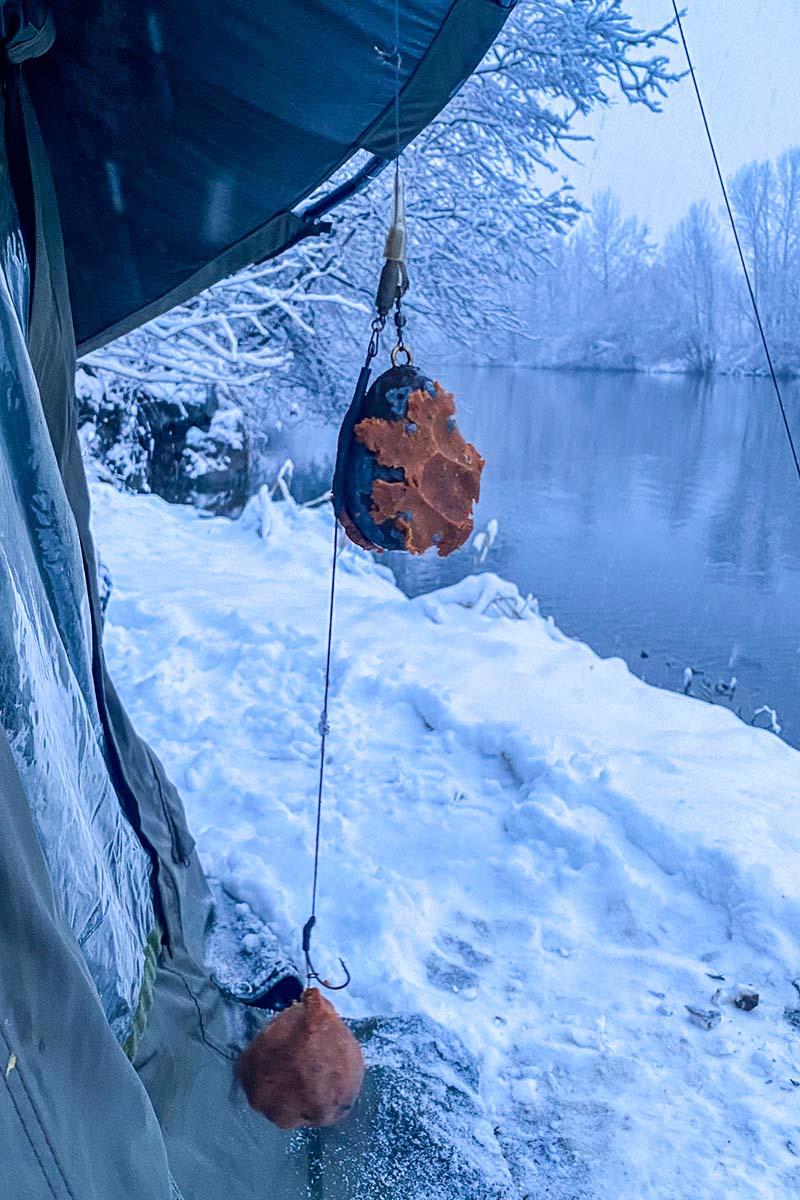 twelvefeetmag karpfenangeln im winter 1 -  - Winterköder, Thomas Roll, Karpfenangeln Winter, 12 ft. Kolumne