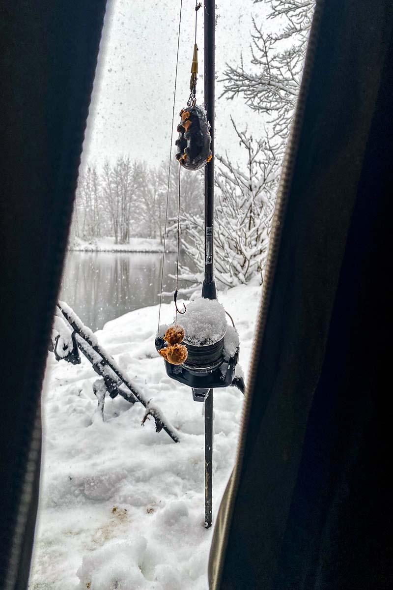 twelvefeetmag karpfenangeln im winter 2 -  - Winterköder, Thomas Roll, Karpfenangeln Winter, 12 ft. Kolumne