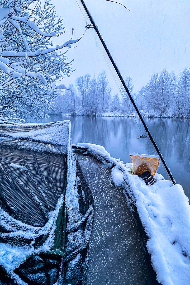 twelvefeetmag karpfenangeln im winter 4 -  - Winterköder, Thomas Roll, Karpfenangeln Winter, 12 ft. Kolumne