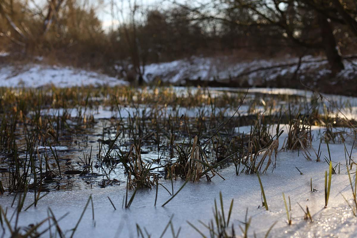 Temperatur beachten Frost -  - Köder für Frühjahr, Karpfenangeln Frühjahr, Groundmixe, Groundbait, Futterplatz im Frühjahr