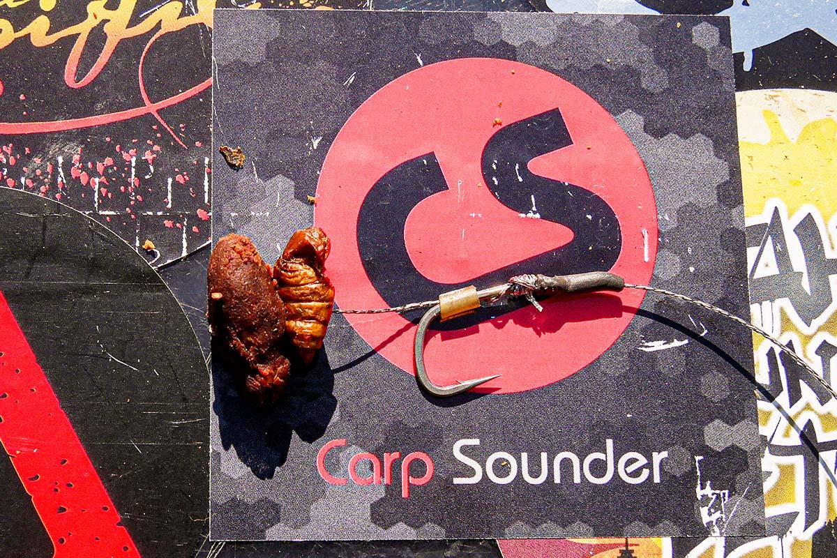 twelvefeetmag karpfenangeln seidenraupen 4 -  - Seidenraupen, Karpfenangeln Seidenraupen, Karpfenangeln mit Seidenraupen